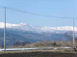 2010_04300024.JPG